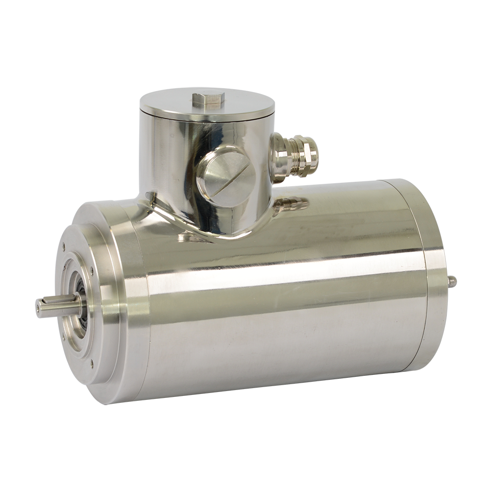 Elsto stainless steel three-phase motor